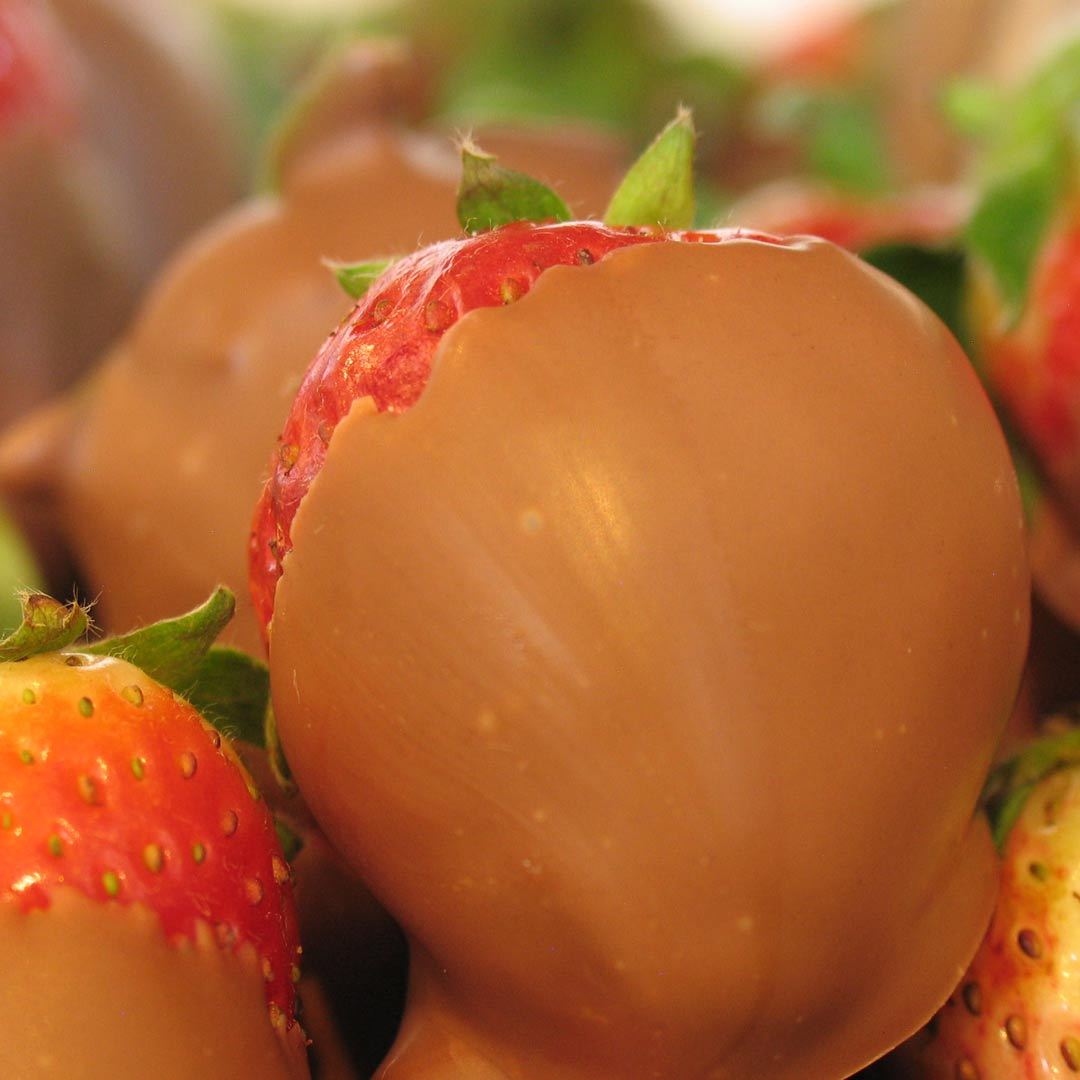 Chocolate-Strawberry.jpg